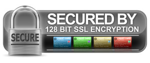 secure online casino 300 gaming pc